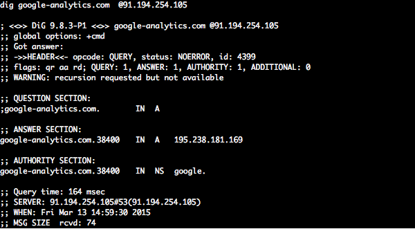 Rogue DNS server hijacking   Google Analytics domain.